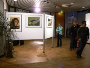 Düsseldorf Nacht d. Museen Aquazoo 2007