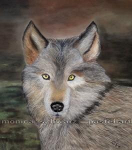 Wolf 2016